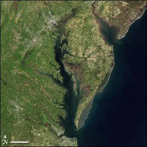 The Chesapeake Bay is America's largest estuary.