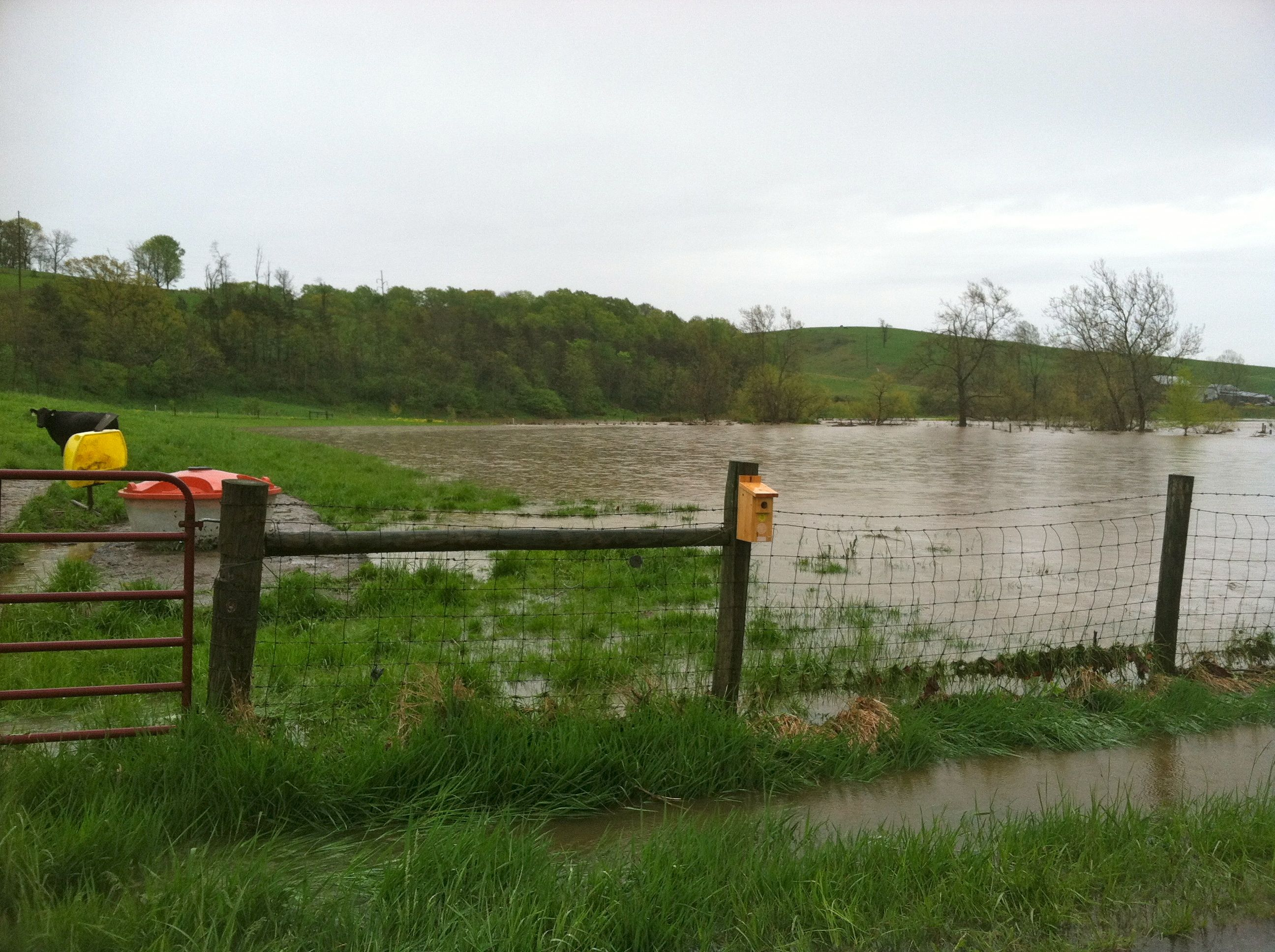 Monsoon Hits Middle River Watershed Flood Plains And