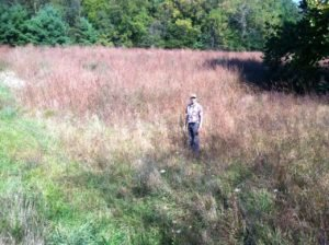 Native meadow where Jim Pile of Cobble Hill Farm released pen-raised Quail in December of 2012.