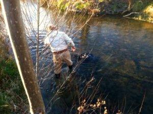 Author investigates black plastic bag in Middle River.