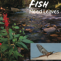 Leaves from Native Trees – The Foundation of Freshwater Ecosystems