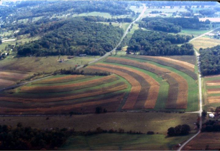 Contour Strip Cropping Systems reduce soil erosion