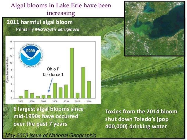 NOAA graphic of algae bloom data in Lake Erie.