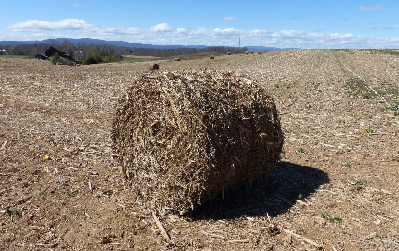 Baled Corn Stalks: Symbol of Agricultural Waste and Poverty