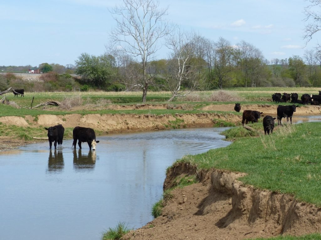 Conservation Reserve Program funds livestock exclusion.