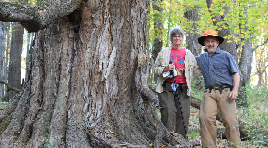 Atlantic Coast Pipeline Will Destroy Old-Growth Forest