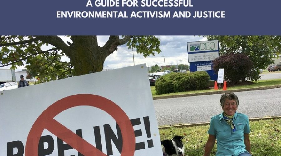 Guide for Successful Environmental Activism and Justice