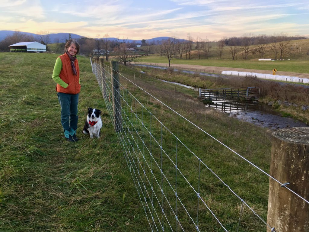 Livestock exclusion fence at Whiskey Creek Angus