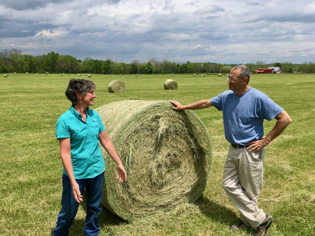 Hay at Last Raid Farm