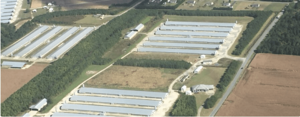 Poultry houses on the Eastern Shore of Maryland